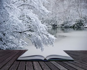 book-in-snow
